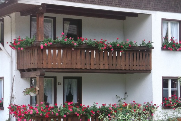 Bed and Breakfast in Buchenbach 11