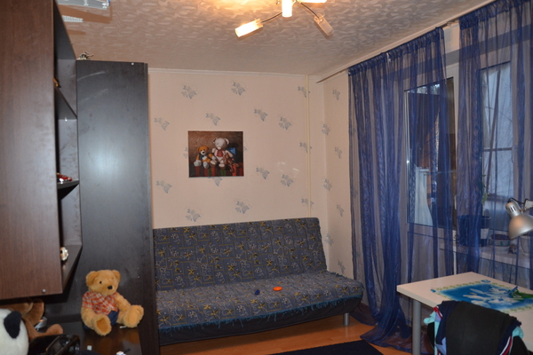 Bed and Breakfast in Shchelkovo 2